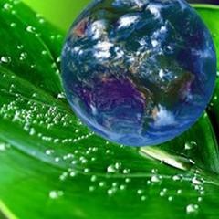Clima e biodiversità, 110mila euro per progetti ambientali dal GAL Murgia Più