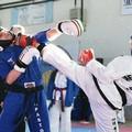 Grandi successi ai Campionati di Taekwondo a Minervino Murge