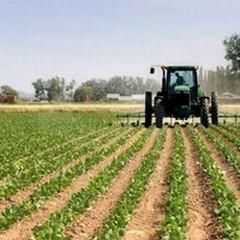 L'Assessore Roccotelli: «L'Amministrazione comunale si sta attivando per i problemi del mondo agricolo».