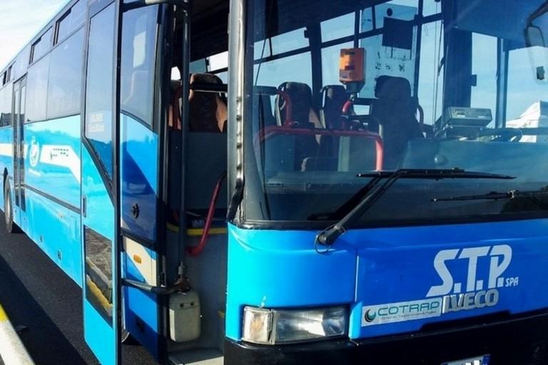 Bus Stp