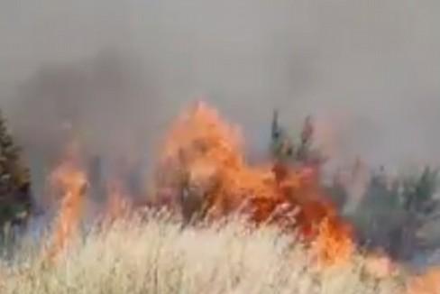 Incendio nel Bosco di Acquatetta