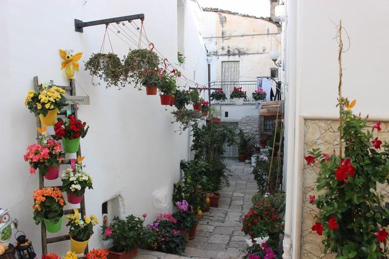 Borgo Scesciola Minervino Murge